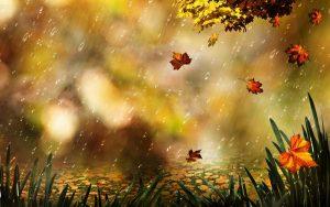 Thơ Tình Cuối Mùa Thu-Bản Tình Ca Ngọt Ngào Của Xuân Quỳnh