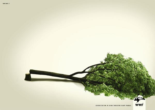 Poster phản ánh nạn phá rừng đang hoành hành.