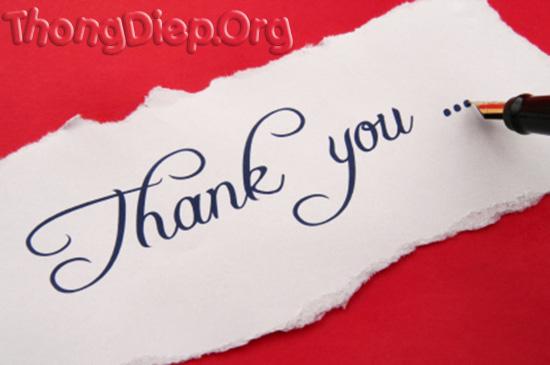 Hãy học cách cảm ơn bạn nhé