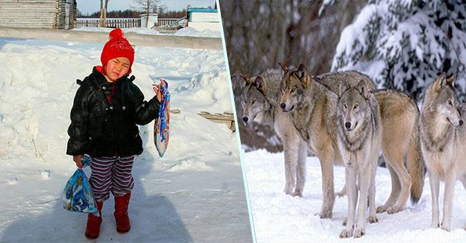 """""""Cô bé quàng khăn đỏ"""" 4 tuổi thời hiện đại: Một mình băng rừng đầy gấu và sói để cứu bà"""