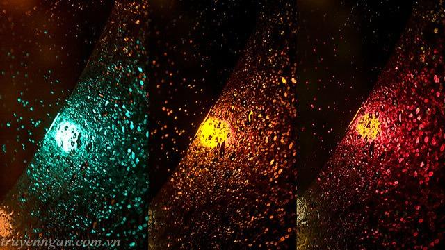 Ngã tư, đèn đỏ, đèn xanh, đèn vàng, vạch trắng
